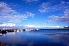青海湖,嵌在青藏高原上的液态蓝宝石