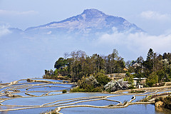 十月,去看中国最美的十大梯田