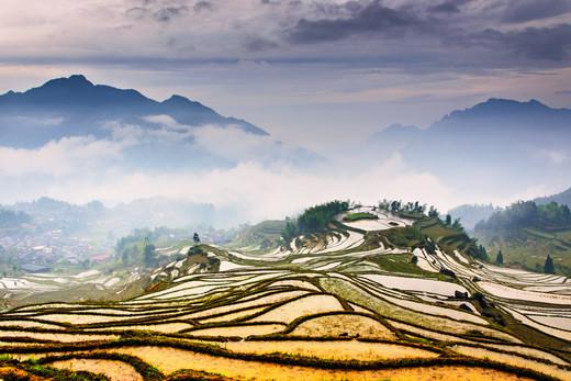 十月,去看中国最美的十大梯田-云和梯田,紫鹊界梯田,红河州,元阳梯田,婺源