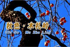 http://qyimg.iqingyi.com/inpost/20151104/w4zskd0w3ezkbq3dujclsux7g9ihcf5u.jpg!postcover