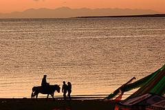 今夏,一起去青海湖等日出