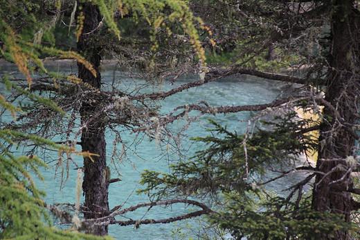 云雾缭绕的黄龙-五彩池,九寨沟