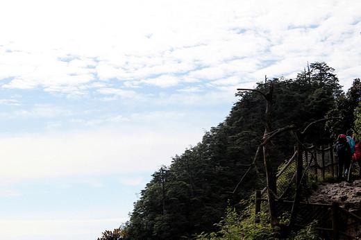 12日四川行摄之五——乐山、峨眉山