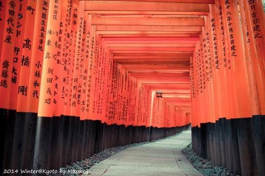 红叶季的霓虹国独行【1】-岚山,皇居,六本木,银座,秋叶原