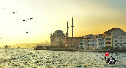 【行走在星月之国,土耳其自由行攻略】1.伊斯坦布尔-独立大街,彩虹阶梯,苏莱曼清真寺,大巴扎-伊斯坦布尔,加拉太塔