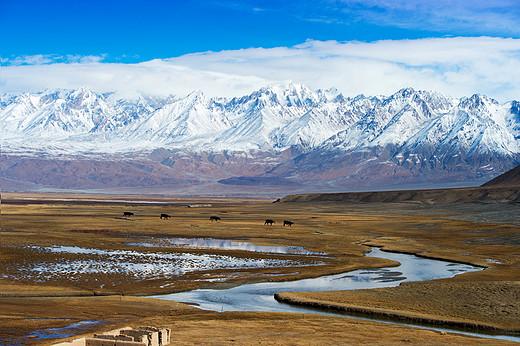 丝绸古道金草滩-新疆