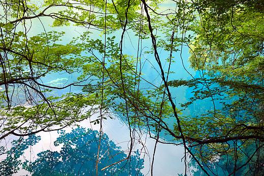 夏日九寨沟-九寨琉璃千古情(上)-五彩池,诺日朗瀑布