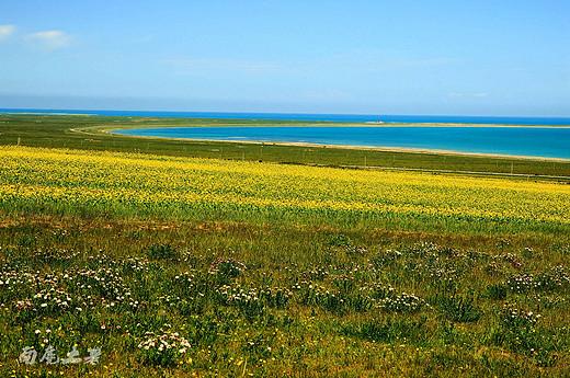 盛夏青海湖,看湖看花看日出-日月山,祁连山