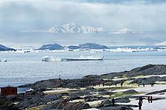 一抹极不真实的白和梦里遥不可及的净——南极&阿根廷17日游(三)