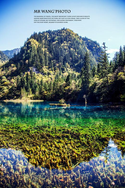 寻找童话中的信仰—— | 九 | 川 |-五彩池,犀牛海,熊猫海,五花海,诺日朗瀑布
