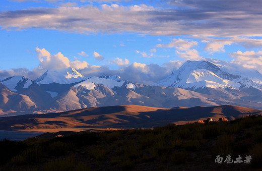 守候玛旁雍错,待旭日光辉涤荡心灵-普兰县,阿里,西藏