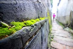 http://qyimg.iqingyi.com/inpost/20161216/kvdbhbwa6qphj9oxfe9swv0fw1mv27el.jpg!postcover