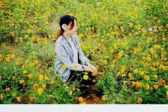 http://qyimg.iqingyi.com/inpost/20170302/5c4e00247fa8bc364d2f520d5a3653e9.jpg!postcover