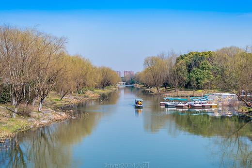 5000株樱花,这是上海初春最美的公园
