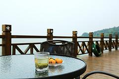 去这片浓烈的江湖,喝一盏虚度时光的碧螺春