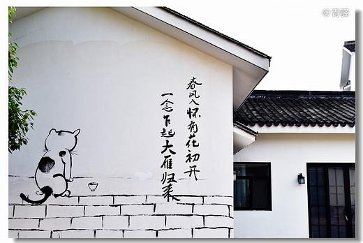 2019年端午闲逛老山-南京