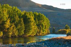 面面旅拍--重踏北疆舊途,夢徊金秋時節,在山水畫境中度過難忘生辰(1)