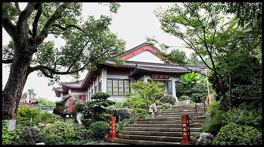 杭州、苏州、成都21天慢节奏行走之旅 (杭州篇)-西湖,灵隐寺,孤山,西溪湿地