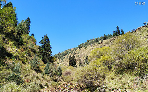 穿过甘南 去看一眼万年的色达红——自驾28天侣行记  川西风光篇之色达-甘孜,拉卜楞寺,果洛藏族自治州