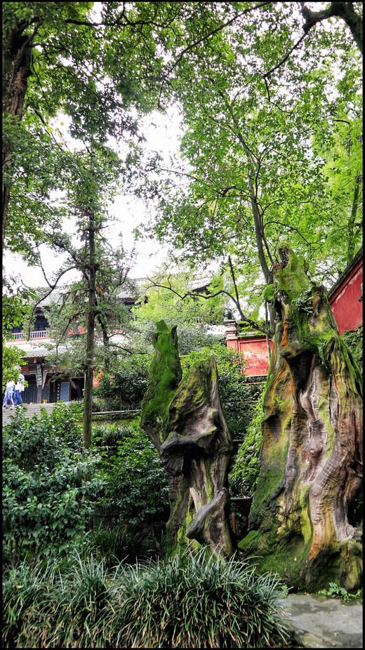 在成都,慢节奏行走(后篇)-都江堰,锦里