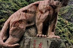 http://qyimg.iqingyi.com/inpost/20200310/3dcb08bd9574778d6d3702a0bd5e07a5.jpg!postcover