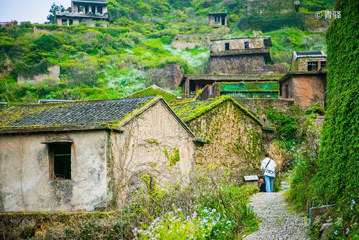 传说中神秘的东海无人村,绿野仙踪的季节又出现了-爱哪哪去旅行分享网