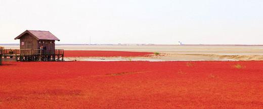 辽宁盘锦的红海滩,几月份去比较合适?周边还有推荐的吗?