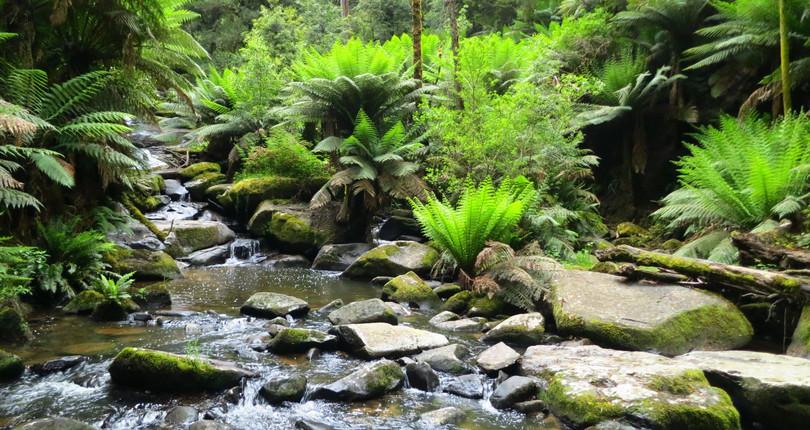 大奧特威国家公园