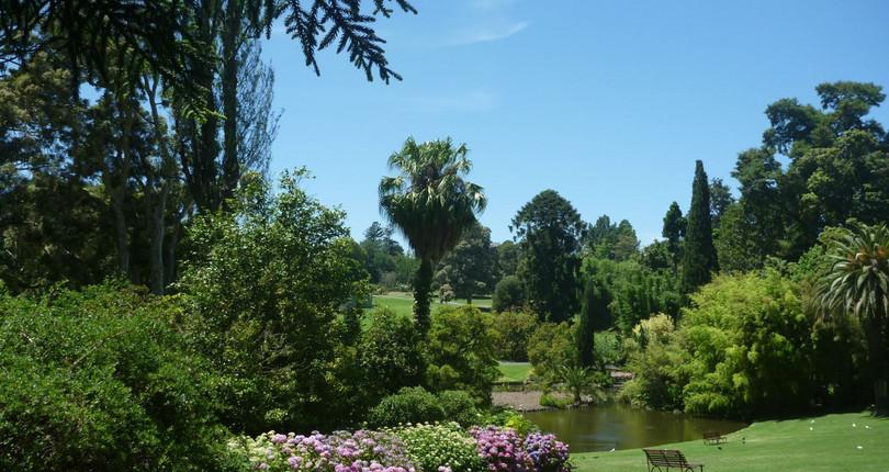 皇家植物园-墨尔本