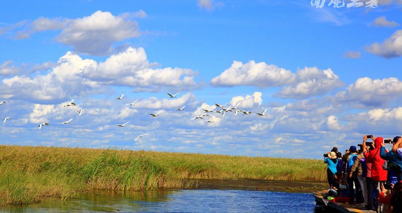 扎龙国家级自然保护区