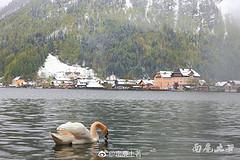https://qyimg.iqingyi.com/inpost/20170516/2666eaacb312978f0d46c1ac90a29375.jpg!postcover