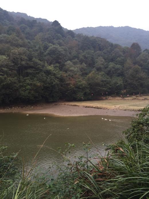锵锵婺源行~-宏村,彩虹桥,江湾,篁岭