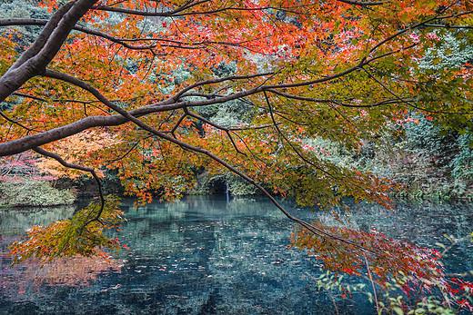 梦不止步,心向远方,我的2017-丽水,同里,苏州,无锡,杭州