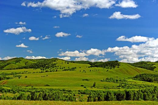 八千里路云与月——呼伦贝尔草原行纪(图文并茂,让你真切感受大草原)-扎赉诺尔博物馆,猛犸公园,黑山头,白桦林,室韦