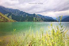 风吹草地,如沐仙境,北疆行摄觅良景(1)