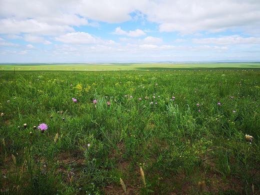 呼伦贝尔自驾感受-额尔古纳,额尔古纳河,呼伦湖,满洲里,呼伦贝尔大草原