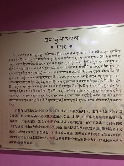 318川藏线之旅-色拉寺,八廓街,小昭寺,大昭寺,巴松措