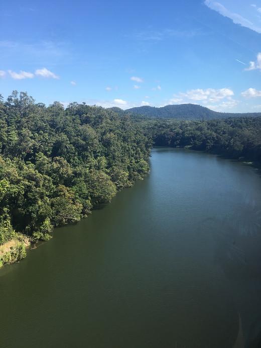 凯恩斯第四天-库兰达热带雨林-昆士兰州,澳大利亚