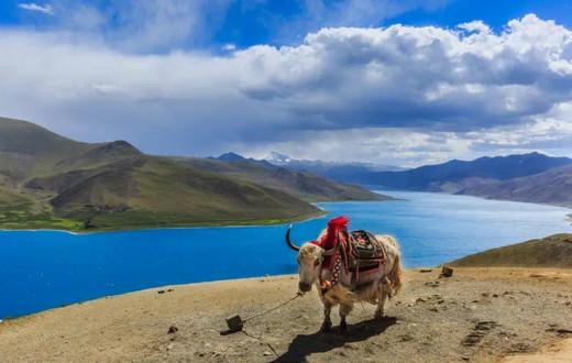 去西藏之前,你应该知道的秘密-哲蚌寺,八廓街,色拉寺,林芝,扎什伦布寺