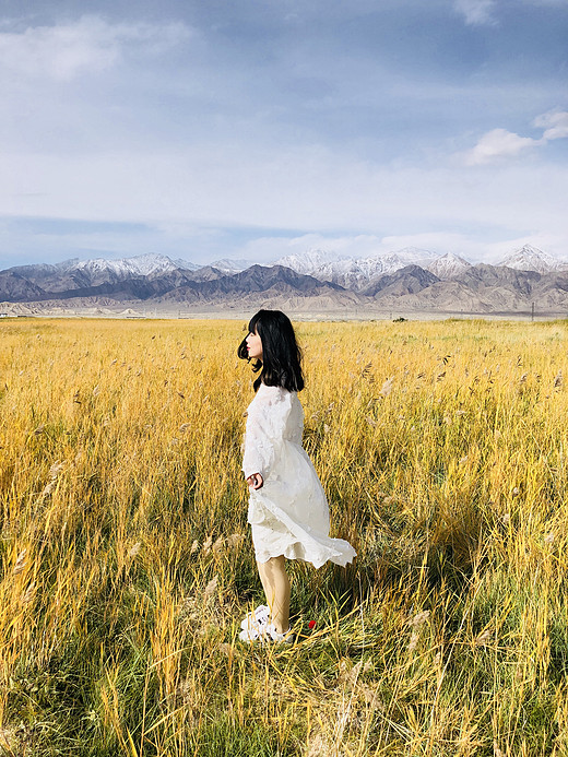 西北环线  见与不见 青海湖有仓央嘉措的故事 敦煌有丝绸之路的历史-门源,张掖,莫高窟,祁连山,倒淌河