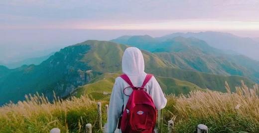 我心里有个梦,想去金顶之上学武功