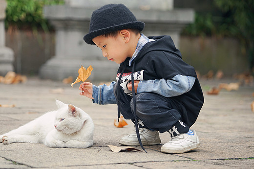 """一起去玩""""鸭"""",秋日无锡亲子周末行-蠡园"""