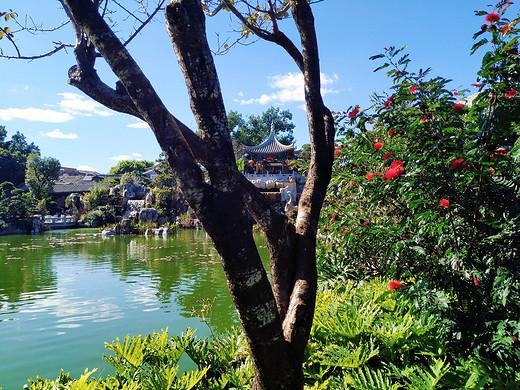 在放肆的蓝天下 尽情的尖叫(一)-建水,云南
