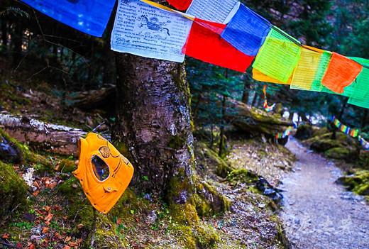 最美的藏族神山脚下,不去天堂,就去雨崩-雨崩神瀑,雨崩村,德钦县,迪庆藏族自治州,梅里雪山