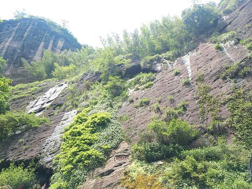 一个人的旅行-武夷山