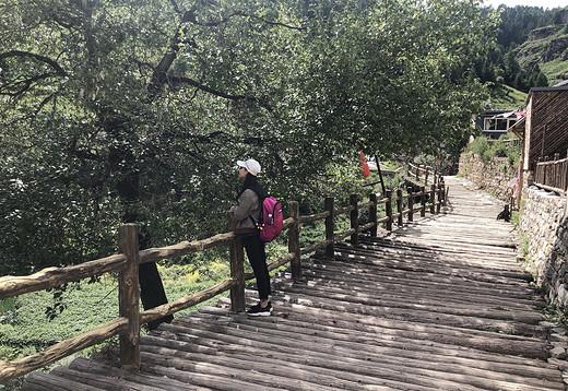 山西陕西自驾旅游-晋祠,王家大院,平遥,壶口瀑布,延安