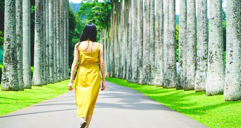 皇家植物园-康提